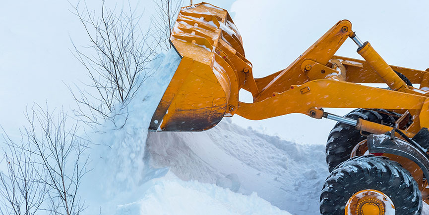 Excavator breaks young trees during harvesting snowdrifts